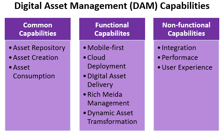 Digital Asset Management (DAM) Capabilities