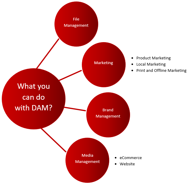 What you can do with Digital Asset Management (DAM) solution