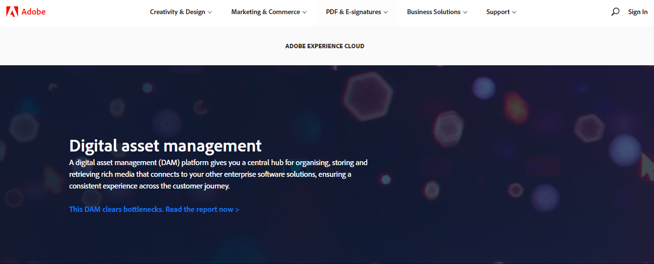 Adobe Experience Manager DAM