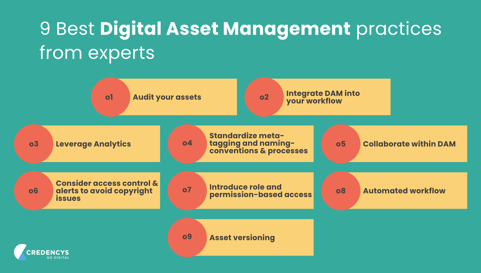 Digital Asset Management Practices